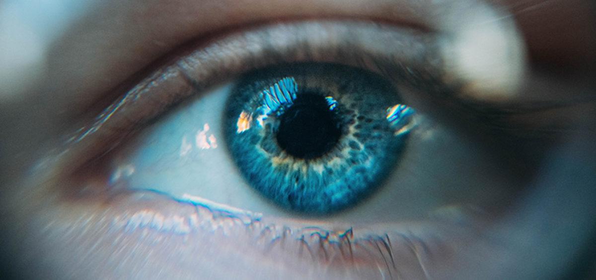 cuerpo-mente-2-Instituto-Erickson-hipnosis-madrid